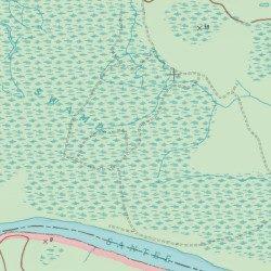 Santee Swamp, Georgetown County, South Carolina, Swamp [Cedar Creek ...