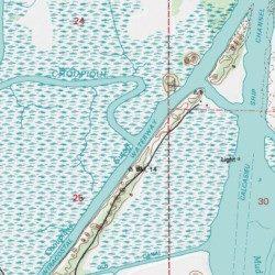 Bayou Choupique, Calcasieu County, Louisiana, Stream [Moss