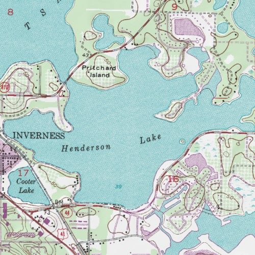 Henderson Lake Citrus County Florida Lake Inverness Usgs